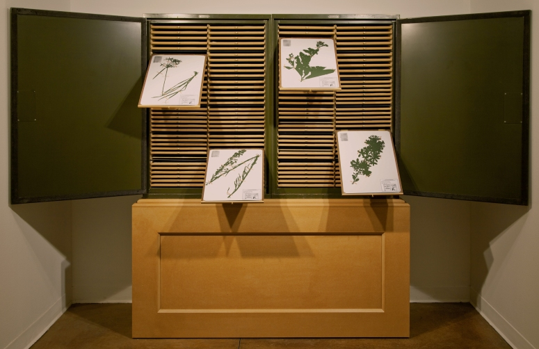 Yurshansky_Blacklisted_A_Planted_Allegory_Herbarium