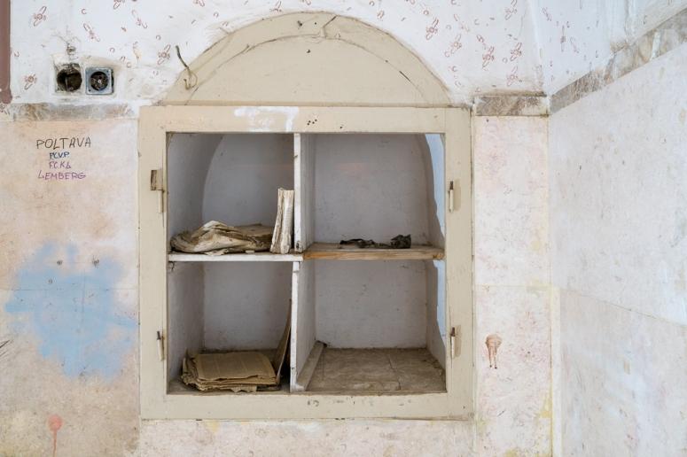 Installation photos of the exhibition: עץ צומח דומם